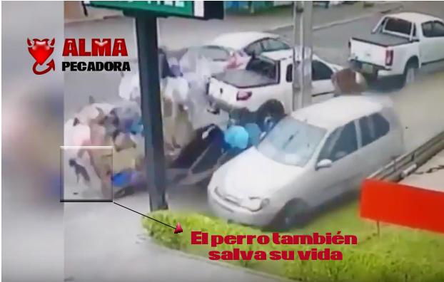 Video accidente - Vagabundo se salva de ser atropellado