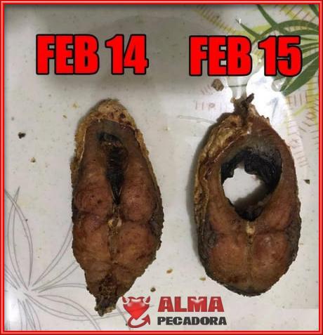 Antes y después del 14 de Febrero