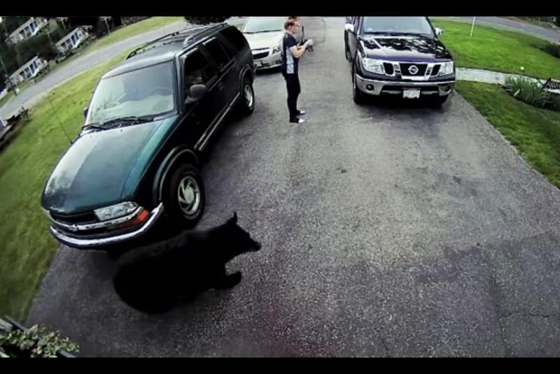 Chica aterrorizada al ver un oso en la puerta de su casa